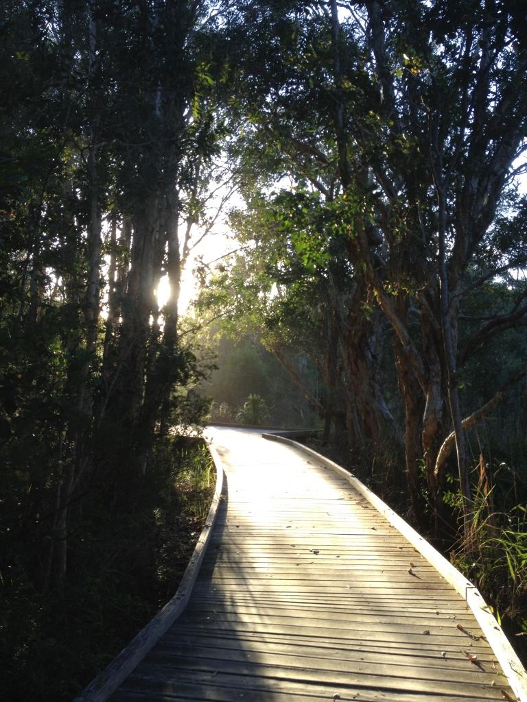 Meditation Byron Bay